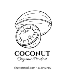 Hand drawn coconut icon. Vector illustration in the old ink style for brochures, banner, restaurant menu and market