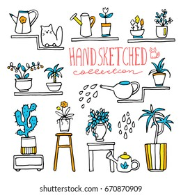 Hand drawn collection of indoor plants and flowers. Additional objects for composition: shelves, water cans and pet.