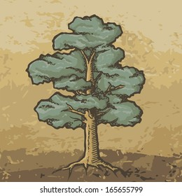 Hand drawn colored oak tree with rough woodcut shading on grunge beige background.