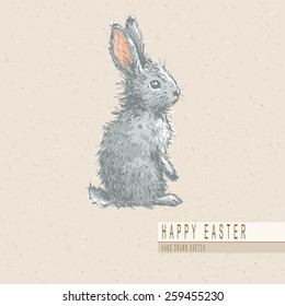 Hand drawn colored sketch of easter rabbit. Vector vintage line art illustration on texture paper.