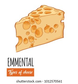 Hand drawn colorful Emmental cheese