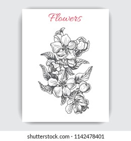 Hand drawn colorful postcard with apple blossom.
