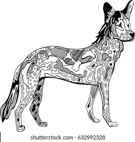 Hand drawn coloring book page with wild Dingo dog in doodle style