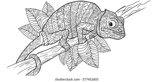 Hand drawn Coloring pages with chameleon , zentangle illustration for adult anti stress Coloring books or tattoos with high details isolated on white background. Vector monochrome sketch