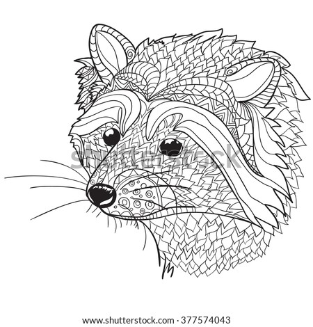 Hand Drawn Coloring Pages Raccoon Head Stock Vector Royalty Free