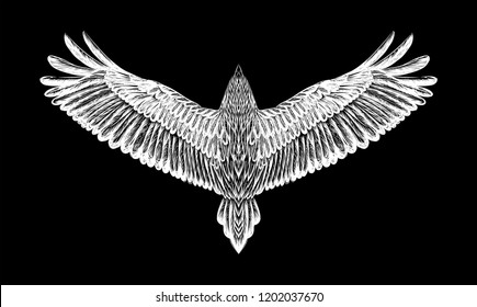 Hand drawn condor.Isolated white bird on the black background.Sketch of bird for tattoo art. Detailed hand drawn eagle for tattoo on back. Boho chic.Condor. Owl. Print for t-shirt.