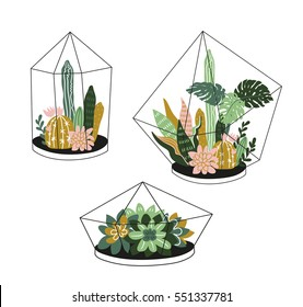 Hand drawn contained tropical house plants. Scandinavian style illustration, modern and elegant home decor. Vector print design with terrariums with exotic plants.