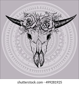 Hand drawn cow or bull skull. Vector illustration isolated. Ethnic design, mystic tribal boho symbol for your use.
