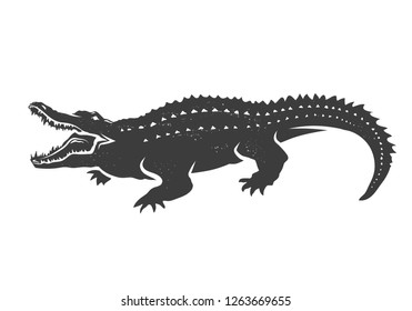 Hand drawn crocodile  isolated on white.Vector illustration.