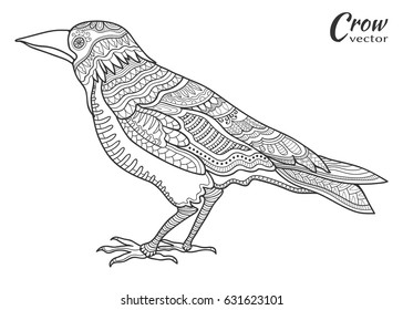 Hand drawn crow raven. Doodle sketch bird in zentangle style for coloring book page. Animal collection for tattoo, t-shirt, poster, invitation card, textile, paper print. Isolated element ethnic totem