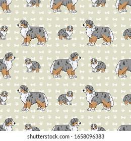 Hand drawn cute australian shepherd breed dog seamless vector pattern.
