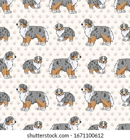 Hand drawn cute australian shepherd dog and puppy seamless vector pattern. Purebred pedigree domestic dog paw background. Dog lover Australia hunting pet all over print. Kennel pooch. EPS 10.