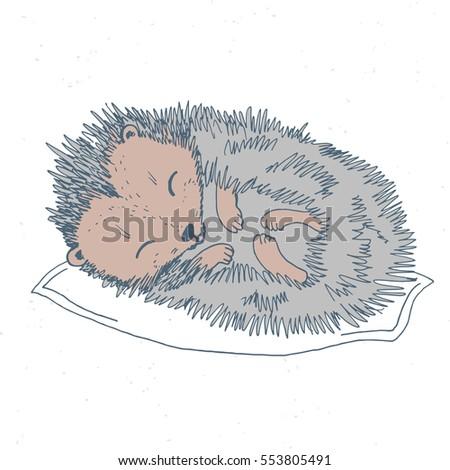 Hand Drawn Cute Baby Animals Sleeping Stock Vector Royalty Free