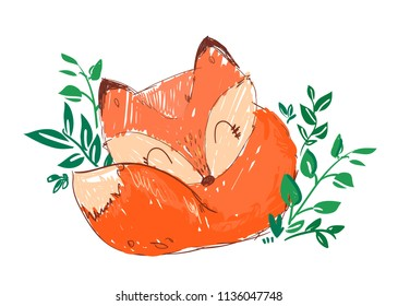 Hand Drawn Cute Fox Vector Illustration, Woodland animal, Print for children's t-shirts.