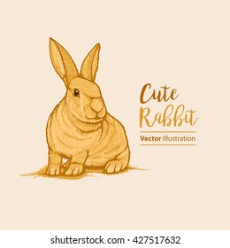 Hand Drawn Cute Rabbit. Vector Eps. 10