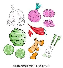 Hand drawn cute vegetables food isolated on white background. Garlic, Bergamot, Ginger, Onion, Chilli and lemon grass. Vector illustration.