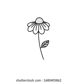 Hand drawn daisy flower flat vector icon isolated on a white background.