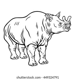 Hand drawn detailed illustration of a standing brontotherium. High quality anatomic and realistic image. Black and white picture. Megacerops.