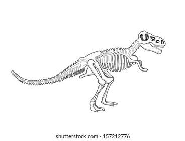 T Rex Skeleton Images Stock Photos Vectors Shutterstock