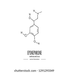 Hand drawn doodle Adrenaline chemical formula icon Vector illustration Cartoon molecule Sketch Epinephrine symbol molecular structure Structural scientific hormone formula isolated on white background