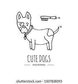 Hand drawn doodle cute dog combing fur with a brush.  Vector illustration on white background. Cartoon normal everyday home pets activities symbol. Sketchy puppy wearing lovely heart collar icon