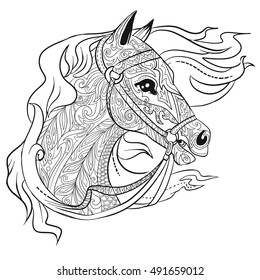 Hand drawn doodle horse head. Illustration for adult coloring book, animal page.