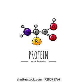Hand drawn doodle Protein chemical formula icon Vector illustration dieting symbol Cartoon sketch weight loss element Fitness diet Sport nutrition Healthy eating bodybuilding power drink