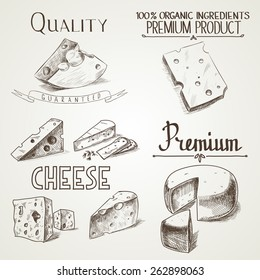 Hand drawn doodle sketch cheese with different premium quality types of cheeses in retro style stylized.