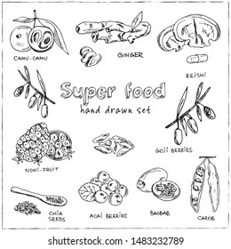 Hand drawn doodle super food. Vector illustration. Isolated elements on white background. Symbol collection.