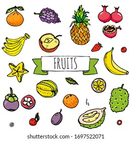 Hand drawn doodle tropical fruits icons. Vector illustration. Seasonal berry symbols collection. Cartoon different kinds of greengrocery on white background. Sketch style Pineapple, Durian, Banana