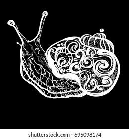 Hand Drawn Doodle Vector Outline Snail Illustration Decorated With Abstract  Ornaments. Abstract Monochrome Snail Drawing