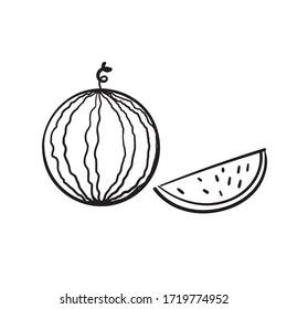 hand drawn doodle watermelon fruit illustration cartoon vector