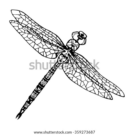Hand Drawn Dragonfly Coloring Page Stock Vector (Royalty Free ...