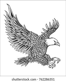 Hand Drawn Eagle Vector
