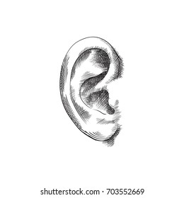 Hand Drawn Ear Sketch Symbol. Vector Listen Element In Trendy Style.