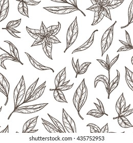 Hand drawn engraving style Green tea leaves Seamless pattern. Black and white Vector illustration