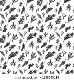 Hand Drawn Evergreen Branches Seamless Pattern Print.Fir,Pine,Cedar,Long needled pine, Berried juniper Illustration . Black and White