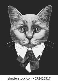 Hand drawn fashion Illustration of Cat. Vector isolated elements.