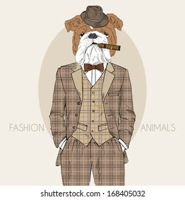 Hand Drawn Fashion Illustration of dressed up english bulldog, in colors