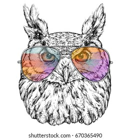 Hand Drawn Fashion Illustration of Hipster Owl with aviator sunglasses. Vector illustration