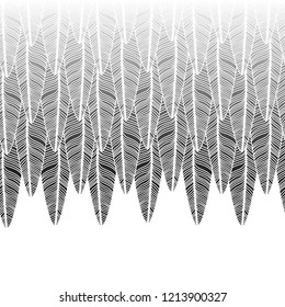 Hand drawn feathers set. Monochrome Vector illustration.