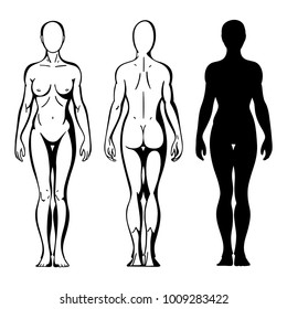 Hand drawn female body in different poses. Woman body front, side and back view template. Isolated vector.