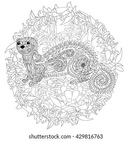 Hand drawn ferret in zen tangle style with high details.Coloring page for anti-stress art therapy. Black white hand drawn zendoodle animal. Sketch for poster, print, t-shirt. Vector illustration.
