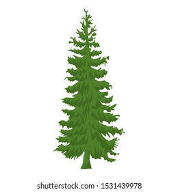 Hand drawn Fir tree with for your design. Cartoon style hand drawn christmas tree. Vector illustration.