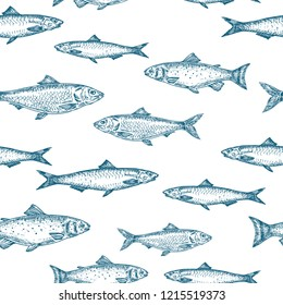 Hand Drawn Fish Vector Seamless Background Pattern. Anchovy, Herrings, and Salmons Sketches Card or Cover Template in Blue Color. Isolated.