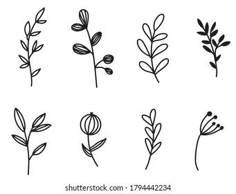 Hand drawn floral & leaves elements in vector. For wedding design, logo & greeting card.