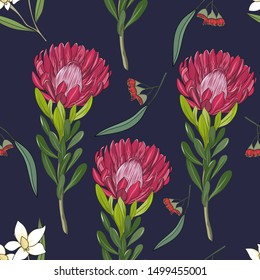 hand drawn floral seamless pattern with australia red protea and gum flower
