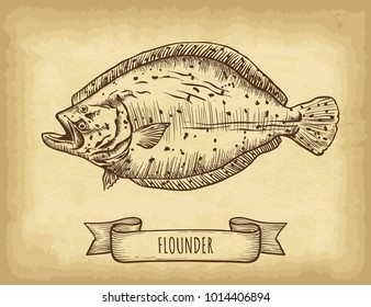 Hand drawn flounder fish isolated. Old craft paper texture background. Ribbon banner. Engraved style vector illustration. Template for your design works.