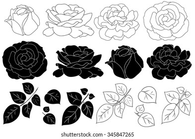 Hand drawn flower  silhouette set, rose collection