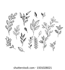 Hand drawn of flower and tree doodle set on white background. Vector illustration design for wedding, logo, templates, invitation and valentine day concept.